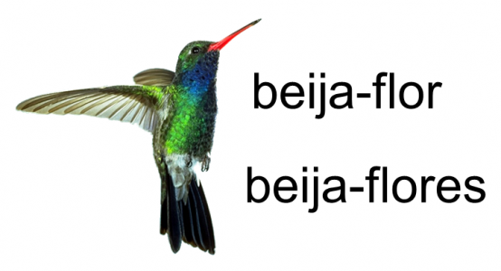 beija-flor_BLOG